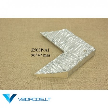 Rėmelis Z503P/A1