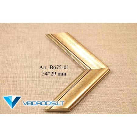 Rėmeliai B675 (01.02.11)